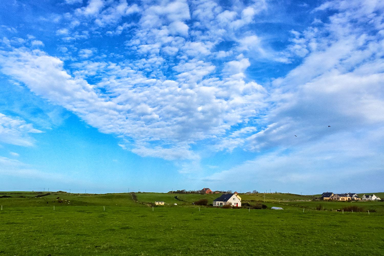 アイルランド郊外の牧草地帯