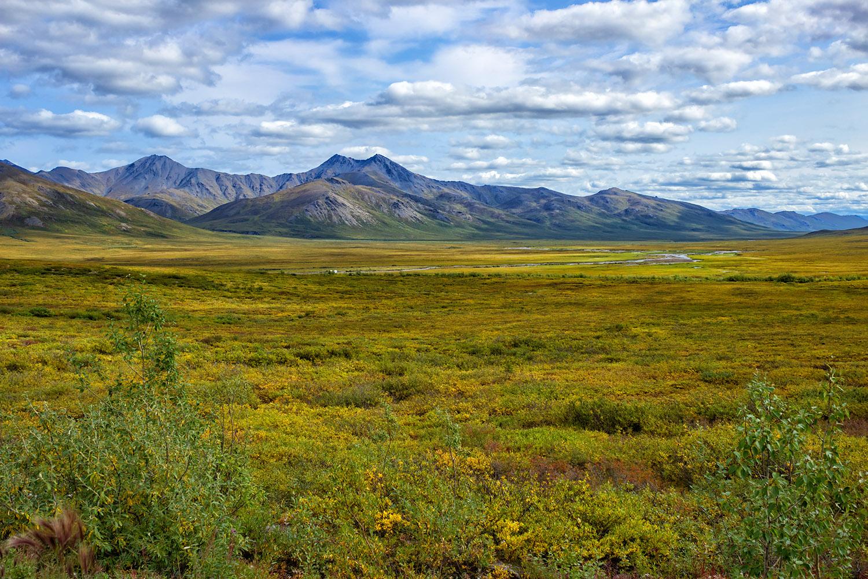 アラスカの大地