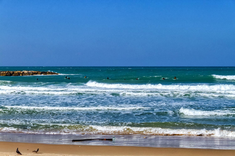 地中海に面した海洋都市テルアビブ