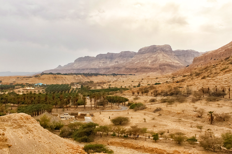 イスラエルの山岳地帯、シナイの山々