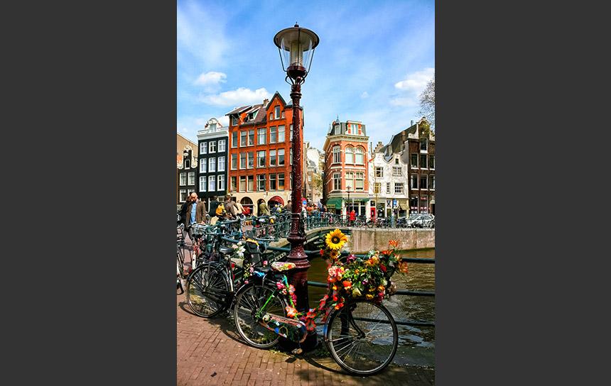 アムステルダム、運河沿いの道に飾られた花