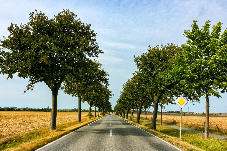 ドイツの農村地帯を横切る一本道
