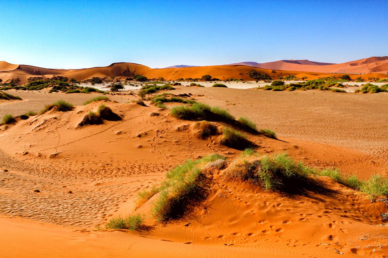 地球の神秘、赤く焼けたナミブ砂漠の砂