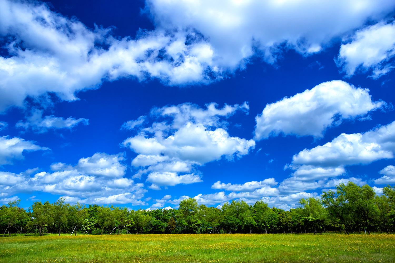湖南公園で味わう加賀の青い空