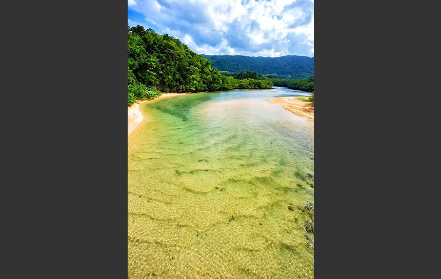 石垣島吹通川はグリーンのグラデが凄い、驚きの川面