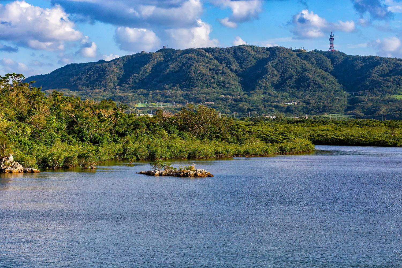 河口に広がる石垣島のマングローブ林