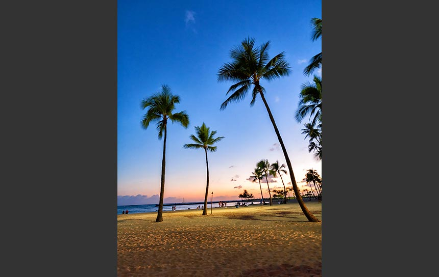 ハワイの夕焼け空にのびるヤシの木