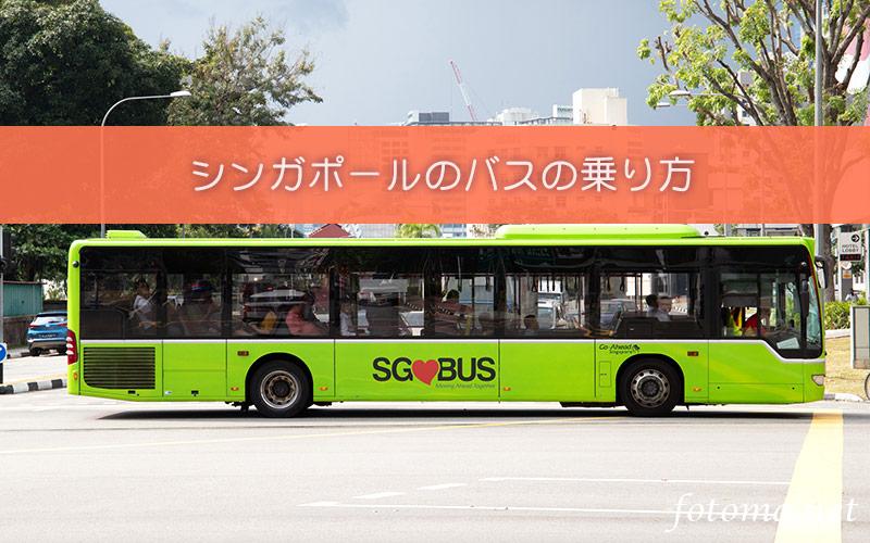 観光にも便利!シンガポール 路線バス乗り方