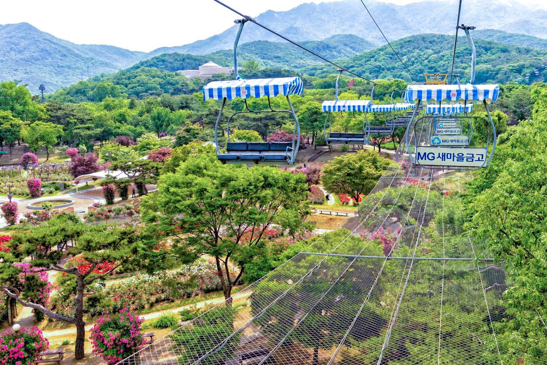 ソウル大公園
